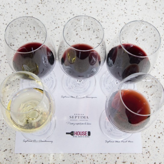 septima-obra-variedad-de-vinos-degustados